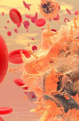Immunogenomics